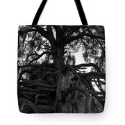 Walking Oak Tote Bag