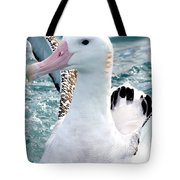 Wandering Albatross Tote Bag