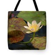 Water Lily 25 Tote Bag