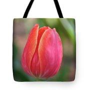 Watermelon Tulip Tote Bag
