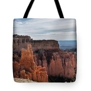 Weathered By Time Tote Bag