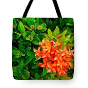 West Indian Jasmine In Sukhothai Historical Park-thailand Tote Bag