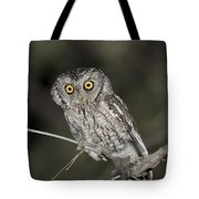 Whiskered Screech Owl Tote Bag
