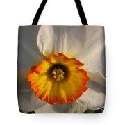 Paper White Daffodil Tote Bag