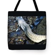 White Moray Eel Tote Bag