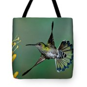 White-necked Jacobin Tote Bag