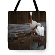 White Pelicans Tote Bag
