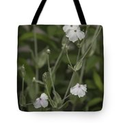 White Rose Campion Tote Bag