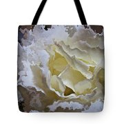 White Rose  Tote Bag by Daniele Smith