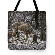 White-tail Deer Tote Bag