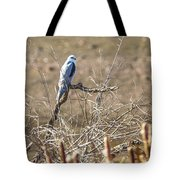White Tailed Kite Tote Bag