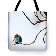 White-throated Kingfisher Tote Bag