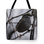 White-throated Sparrow Tote Bag