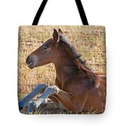 Wild Horse Foal Tote Bag