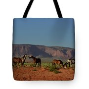 Wild Horses In Monument Valley Tote Bag