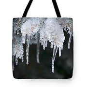 Winter Branches In Ice Tote Bag