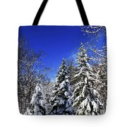 Winter Forest Under Snow Tote Bag
