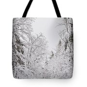 Winter Road Tote Bag by Cheryl Baxter