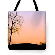 Winter Sunset Tree Tote Bag