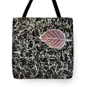 Winter With Frosted Leaf On Frozen Grass Tote Bag