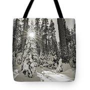 Winter Wonderland - Badger Pass In Yosemite National Park Tote Bag