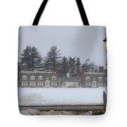 Winters Light Tote Bag