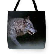 Wolf On The Prowl Tote Bag