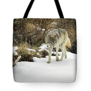 Wolf River Tote Bag