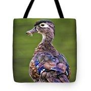 Wood Duck Juvenile Tote Bag