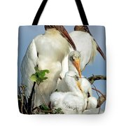 Wood Stork With Nestlings Tote Bag
