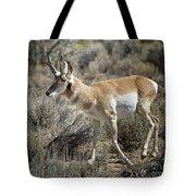 Wyoming Pronghorn Tote Bag