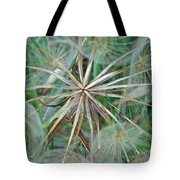 Yellow Goat's Beard Wildflower Seed Head - Tragopogon Dubius Tote Bag
