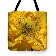 Yellow Iceland Poppy Tote Bag
