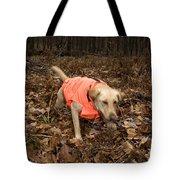 Yellow Labrador Tote Bag by Linda Freshwaters Arndt
