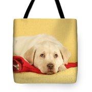 Yellow Labrador Puppy Tote Bag