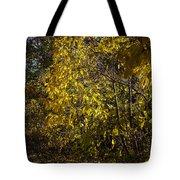 Yellow Leaves Tote Bag