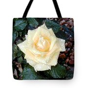Yellow Rose At Dawn Tote Bag