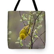 Yellow Warbler -1 Tote Bag