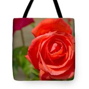 Young Red Rose After Rain Tote Bag
