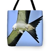 Young Swallow-tailed Kite Tote Bag