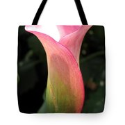 Zantedeschia Named Mozart Tote Bag