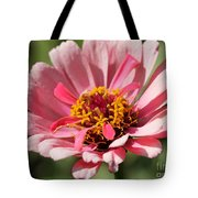 Zinnia From The Whirlygig Mix Tote Bag
