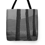 Blue Ridge Mountains - Virginia Bw 8 Tote Bag