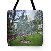10 Days In Florida Tote Bag