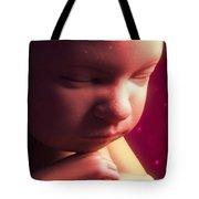 Developing Fetus Tote Bag