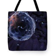 Fertilization Tote Bag