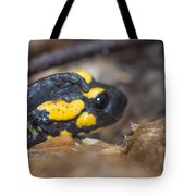 Fire Salamander Tote Bag