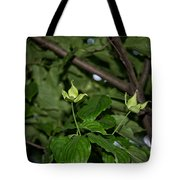 Forest Hill Gardens In Queens Tote Bag