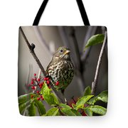 Fox Sparrow Tote Bag