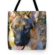 10-month-old Shepherd Tote Bag